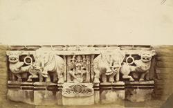 Close view of carved marble surround from the asana or throne of a Jain temple image, Dabhoi 829